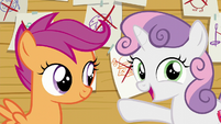 "Sweetie Belle ""but I wanna try crochet"" S6E4"