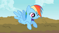 Rainbow Dash looking over S2E8