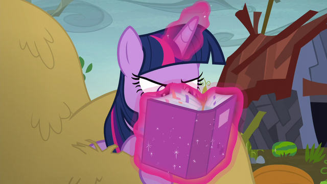 File:Twilight with her nose in her portfolio S5E23.png