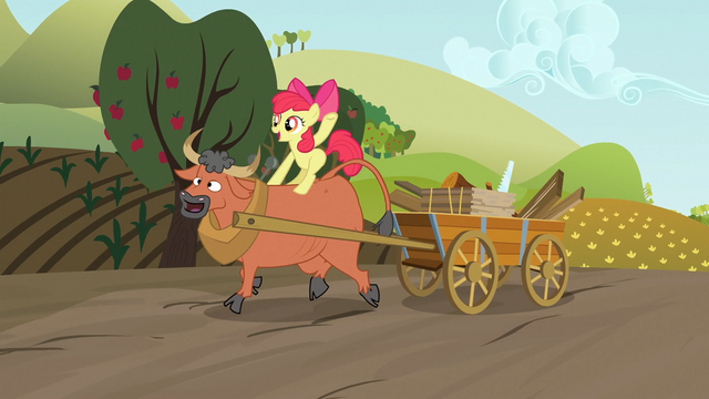 File:Apple Bloom riding a steer S03E08.png