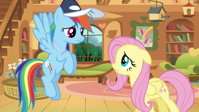 File:Rainbow Dash Fluttershy Hat S02E22.png
