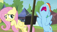Rainbow Dash exasperated S4E22