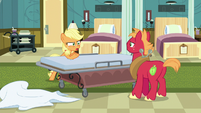 """Applejack """"if Rich finds out about all the lies"""" S6E23"""