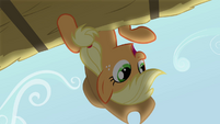 Applejack 'Your fellow Apples are waitin' for you to join them' S3E08