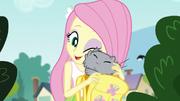 Fluttershy nuzzling her pet cat EG3