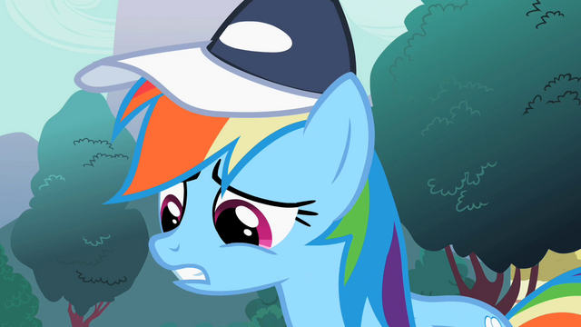 "File:Rainbow Dash ""Made the cut"" S2E07.png"