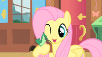 Fluttershy and a new friend1 S01E22