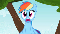 Rainbow Dash Scream 4 S2E07