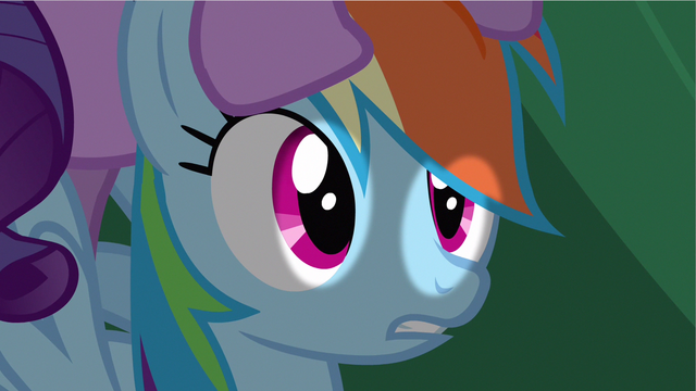 File:Rainbow Dash had chance S2E21.png