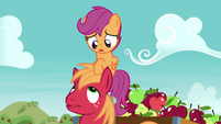 "Scootaloo ""Not even a tinge of dissatisfaction?"" S6E4"