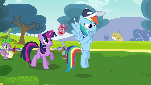 File:Rainbow Dash and Twilight S2E22.png
