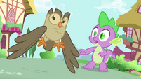 Spike and Owlowiscious hear a commotion S4E23