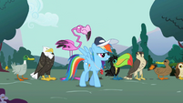 Rainbow Dash with a line of animals S2E07