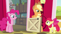 Apple Bloom complimenting Applejack S4E09.png