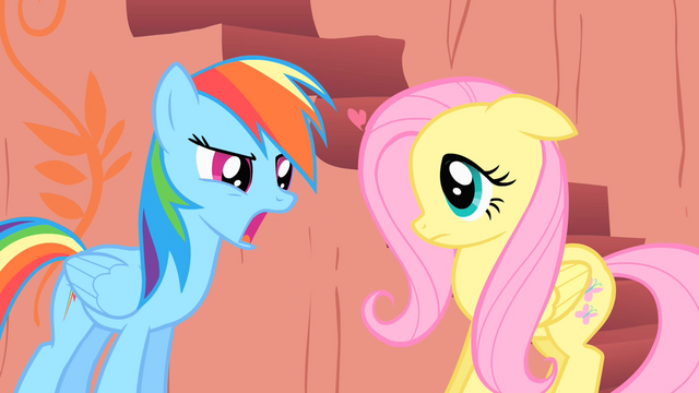 File:Rainbow Dash and Fluttershy S01E16.png