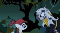 Zecora talking to Pipsqueak S2E04