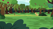 Applejack staring at a target S6E18