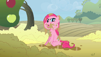"Pinkie Pie ""what happened?"" S02E01"