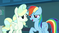 "Rainbow Dash ""you say that like it's not"" S6E24"