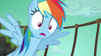 Rainbow Dash worried about Quibble S6E13