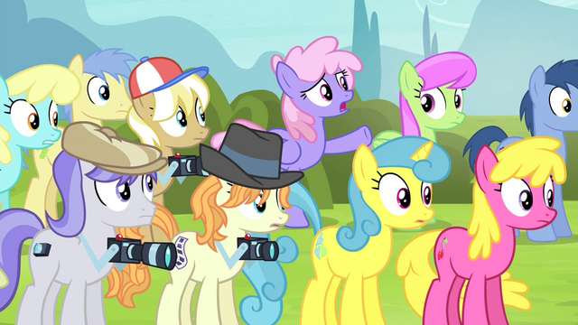 "File:Rainbowshine ""are you saying you lied?"" S4E20.png"