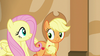 Applejack and Fluttershy happily follow Gladmane S6E20