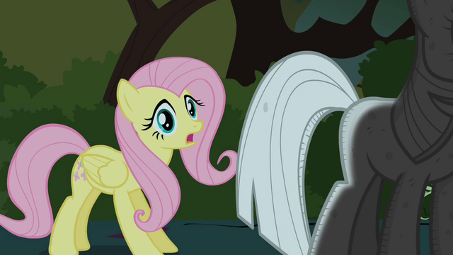 File:Fluttershy finds Twilight S01E17.png