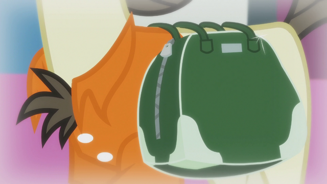 File:Donny's saddlebag S5E9.png
