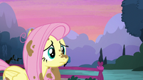 Fluttershy confused S5E3