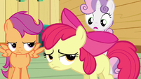 Sweetie Belle tell Applejack S3E4