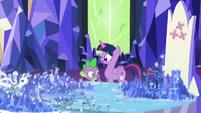 Spike getting Twilight's attention S5E16