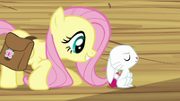 "Fluttershy ""Three times"" S03E11"