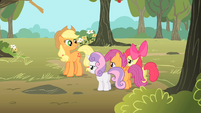 "Applejack ""Cutie Mark Crusaders"" S1E18"