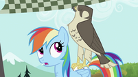 Rainbow Dash with the falcon S2E07
