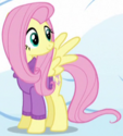 Fluttershy winter clothes ID S5E5