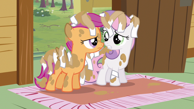 File:Scootaloo & Sweetie Belle why... S2E23.png