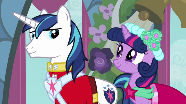 File:Twilight and Shining Armor smiling at each other S2E26.png