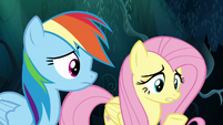 Fluttershy giving advice to Zephyr Breeze S6E11
