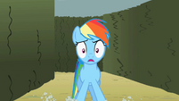 Rainbow Dash sees something S2E01