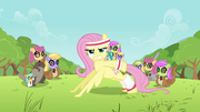 Fluttershy Pushup S02E22.png
