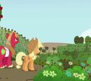 Äppelpengssäsong