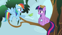 Rainbow Dash talking to Princess Twilight S4E01