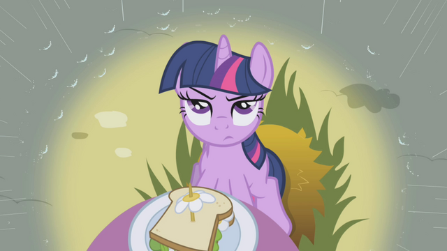 File:Twilight skeptical of Rainbow Dash S1E03.png