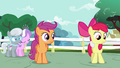 Apple Bloom about to be pulled by Sweetie S4E15.png