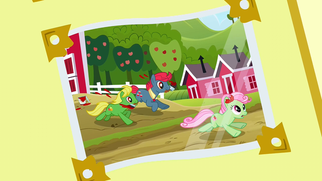 File:Photo album 6 (Ponies playing around) S3E8.png