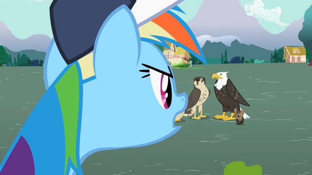 "File:Rainbow Dash ""Going to be"" S2E07.png"