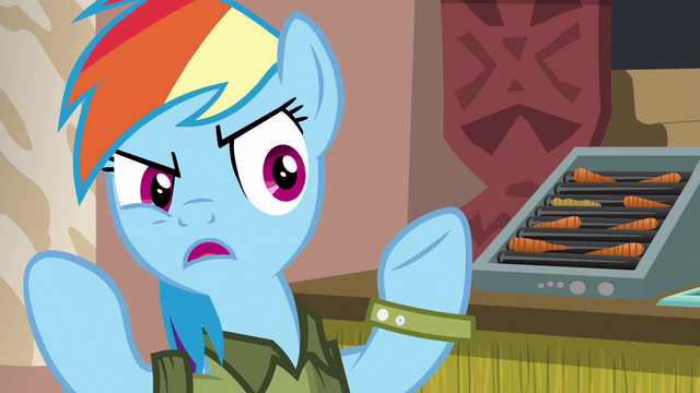 "File:Rainbow Dash ""why would you even come"" S6E13.png"