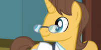 Doctor Horse