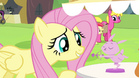 Fluttershy looking at bunny figurine S4E22