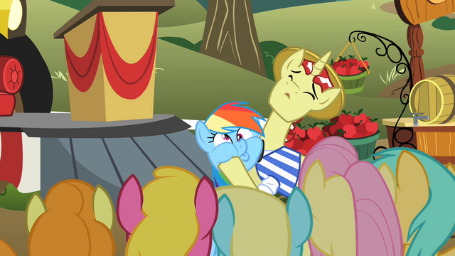 File:Rainbow Dash getting cheeks squished S02E15.png